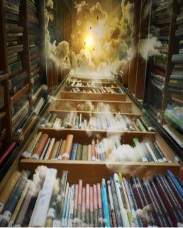 Der Bücherhimmel des Bücherwerks der passage